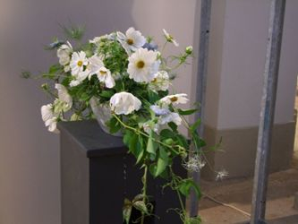 Natural Flower Design for Decoration by Michaela Jankowiak
